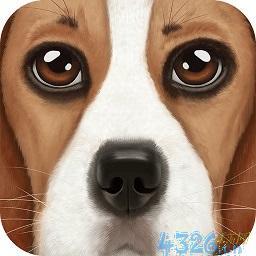模拟养狗游戏下载?以前在百度空间里的模拟养狗游戏到哪里去了?